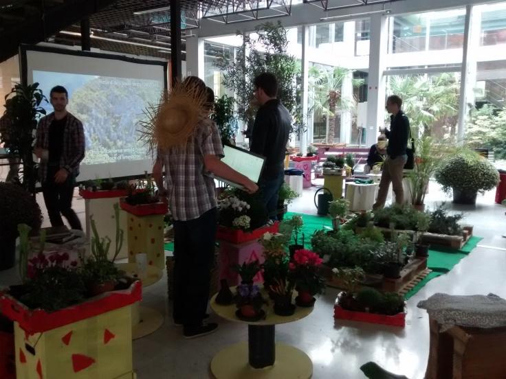 Plants + Nature Movie